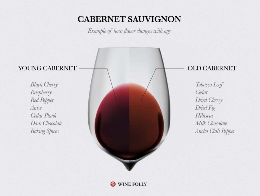 cabernet sauvignon wine folly
